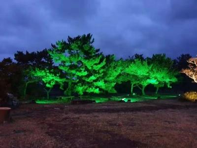 韩国光纤亮化项目