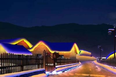 东北雪村亮化项目