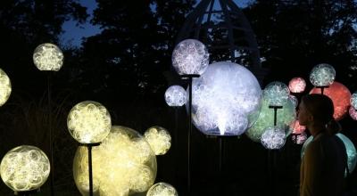 GLO-015 光纤麦穗大球灯