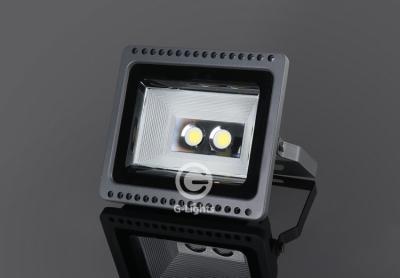 F100-542 100W泛光灯